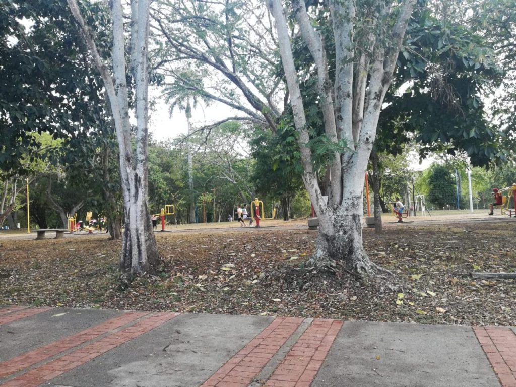 Parque Bio saludable Buga