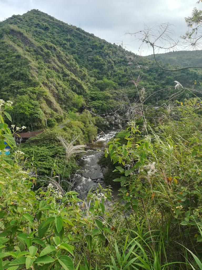 zonas verdes Buga