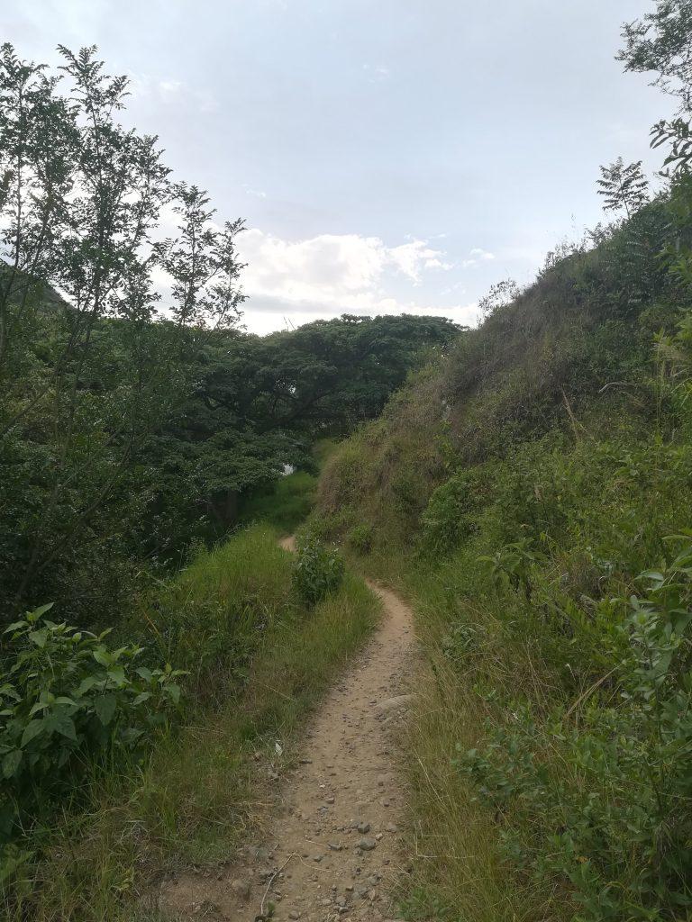 Caminos naturales Buga